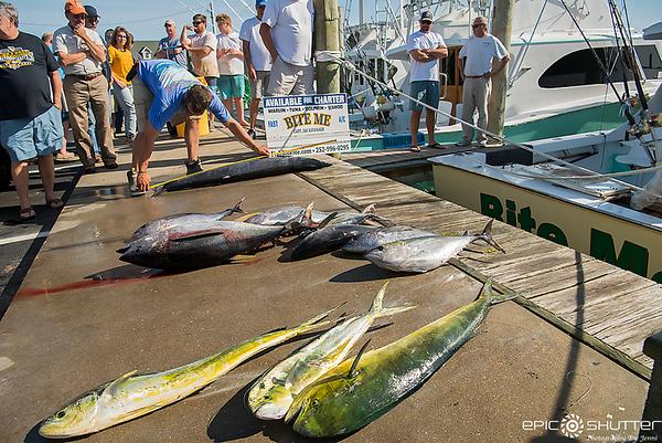 May 3, 2018, Hatteras Harbor Fishing Report, Jeffrey's Seafood