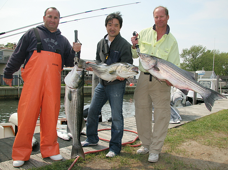 5/16/2007<br /> <br /> I fished today with Joe DeVito and his clients Ling Kwok and Stuyvesant Pierrepont (left to right).  We had a great day of bass fishing in pretty tough windy conditions.<br /> <br /> We caught a nice bunch of bass, a 26 pound, 25 pound and 20 pound and several more in the teens.  Stuyvesant had the big fish on bait, Ling had the second biggest on bait and a 20 pound fish on a plug.  We also had a bunch of bluefish to liven up the action and dropped a couple of fish as can be expected.