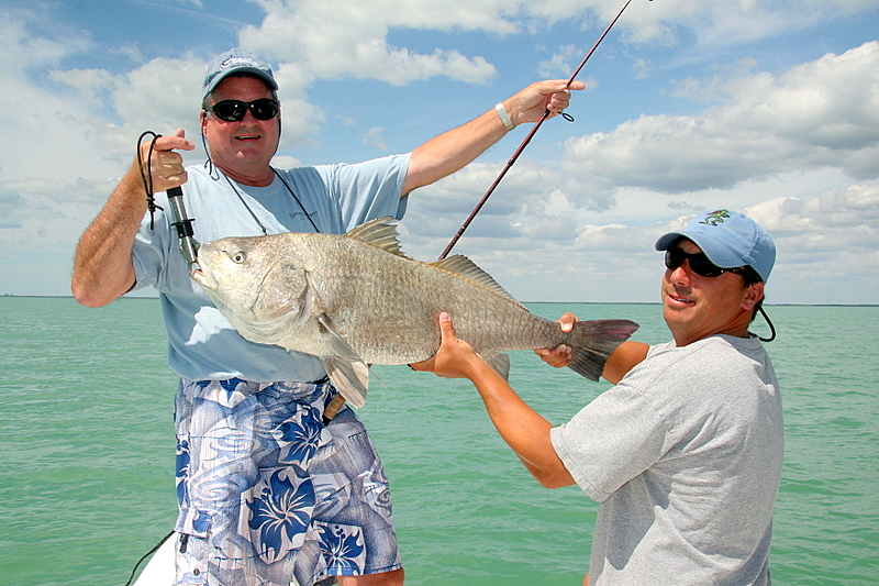 We ran across a big school of black drum and Tom hooked up with one about 25 pounds.  It took a good ten minutes or more to boat this fish on light tackle.