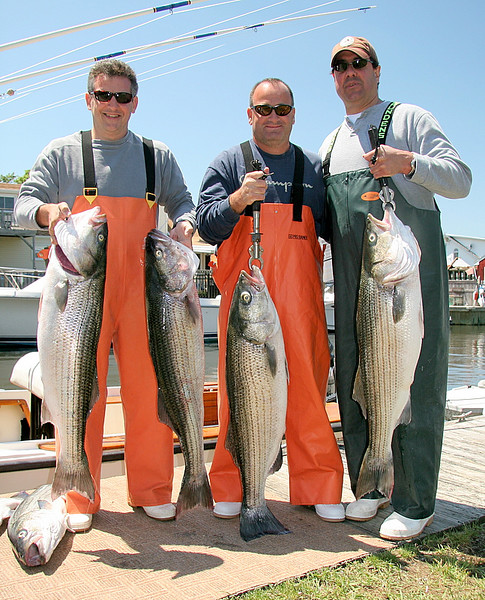 Here are the happy fishermen from our great day.  George, Joe and Don, left to right.  A nice catch of bass to about 30 pounds.<br /> <br /> Another banner day on the water with great guys.<br /> <br /> Captain Al Lorenzetti