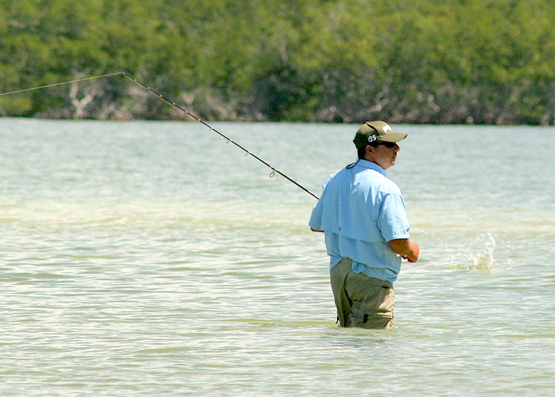 3/30-4/4-2008<br /> <br /> I fished out of Marco Island for the last week. We had a good time with big kingfish, sharks, tarpon snook etc. <br /> <br /> Here is Wes little wading on the hunt for snook.