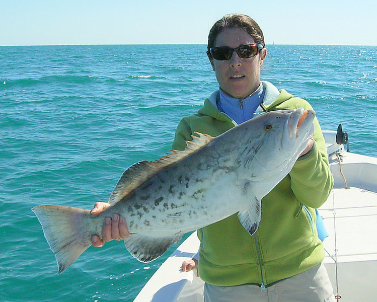 Here is Jodi with a real nice black grouper.  Jodi is another great angler and loves to fish with her family.<br /> <br /> I'll bet this beauty was on the dinner table that night.<br /> <br /> Great shots guys and I hope to see you real soon and do some fishing with you.<br /> <br /> Captain Al Lorenzetti