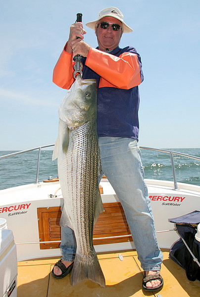 Here is Dan with another beauty of 34 pounds and loving it all the way.