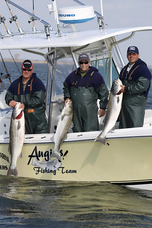 11/3/2009  Fishing has been tough this fall season making the Riverview more challenging then ever. Team Augie's however already had 3 nice fish on board as of noon.  1:35pm Tim C. Smith  Riverview 2009 Images (Click Here)