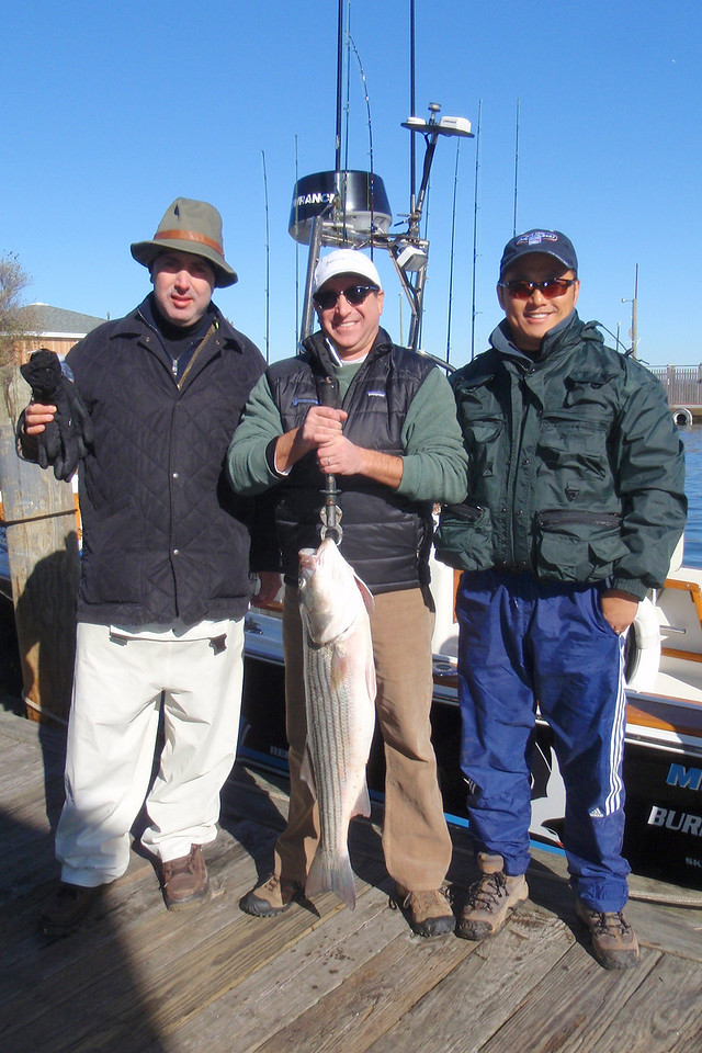 11/12/2010<br /> <br /> Today I fished with Mike Gantcher and his guests Craig and John (center, left and right). <br /> <br /> We had a small window of opportunity to fish in the morning. We tried plugging several spots with no luck. I think most of the fish have left the back bay areas.<br /> <br /> We fished eels near the inlet and scored with a bass of about 15 pounds. <br /> <br /> It was a nice day and we all had a good time.<br /> <br /> Another excellent day on the water.<br /> <br /> Captain Al Lorenzetti