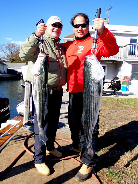 Mark and Anthony decided to keep two fish for the table. <br /> <br /> It was a fun day with lots of action.<br /> <br /> Another excellent day on the water.<br /> <br /> THE FISHING IS NOW EXCELLENT AND I HAVE A  COUPLE OF OPEN DAYS NEXT WEEK. IF YOU WANT TO GET INTO THE ACTION DROP ME AN EMAIL AT CAPTAL@SKIMMEROUTDOORS.COM TO SET UP A DATE.<br /> <br /> Captain Al Lorenzetti