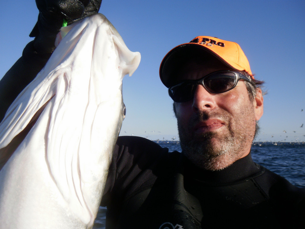 Caught and released from my kayak Monday 10-18 off Ditch Plains, Montauk about 2 miles out...Perfect weather conditions...Huge schools of bass and blues during this 4 hour<br /> session had 30 bluefish 5 to 12 pounds and a dozen bass ranging from schoolie size, teens, a few low 20's and the one pictured was high 20 to low 30 but I was to spent to be a partial judge...All fish were caught on 007 jig with green tube on light tackle rig...I took pic of me holding fish, gotta love the waterproof camera...I was surrounded at one point by birds and had fish bouncing off the kayak...Unbeliveable<br />  <br /> David Harrison<br /> Marietta, GA