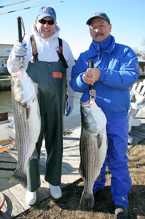 11/2/2006<br /> <br /> I fished today with Steve and Barry left to right.  We had a good day fishing live bait and plugging for striped bass.  We caught on both plugs and bait.  The fish were pretty good in the mid 20's and fought pretty well.  It was a brisk day but beautiful.  The crew had a good time and I enjoyed fishing with them.  Another good day on the water.<br /> <br /> Captain Al Lorenzetti