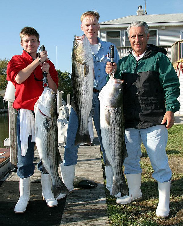 10/10/2006<br /> <br /> I fished today with Charles Herman (center) his son Charles (left) and his father-in-law Vinny (right).<br /> <br /> We had a good day of fishing with nice fish in the mid to upper 20's.  We brought home four and missed a few others.  We fished bait and plugs.  The biggest fish was on a plug.  A lot of nice fish moved in over the past couple of day.  I know of fish in the 40 pound range that were caught.  It was a beautiful day on the water. <br /> <br /> Some hot fishing is on tap for the coming weeks and it is now happening.<br /> <br /> Captain Al Lorenzetti