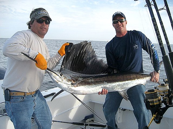 Date Caught: 1-1-10<br /> <br /> Location: PALM BEACH<br /> <br /> Photo Description: Tom, Brian, Bill and myself went 3 for 3 on sailfish New Years Day. Fish on by 0900 hrs.  Good friends, good laughs, good fishing and a good way to start the New Year.<br /> <br /> Scott Roberts