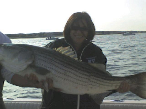 I read Gary Arnolds fishing report so I decided to see what we could do this week in the Locojo.   A little friendly fishing competition with some good friends on Special K's is good for all.   Fished Wednesday evening with Mike Sacca and we had 4 fish to 25 lbs.  Had the fish at the very end of the tide.  Called my good buddies in but the final score was four to zip.  Oh well rather be lucky than good.  Let me tell you that Mike can handle a knife pretty well for a surgeon, great fillet work!