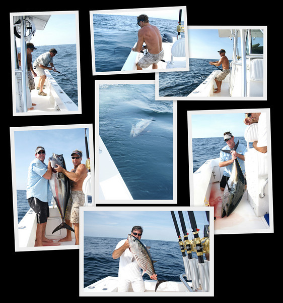8-21-2010<br /> <br /> Location: SE Compass Rose<br /> <br /> Kevin Winter, Kevin Krause and Bobby Conlin had an incredible bite 45 mile SE of the Fire Island Inlet. 17 Bluefin were brought boatside and we dropped or broke off another 6. We fished with Hammered Jigs and pink sardine jigs for non-stop action. By 11 am we headed back home.<br /> <br /> Paul Krause