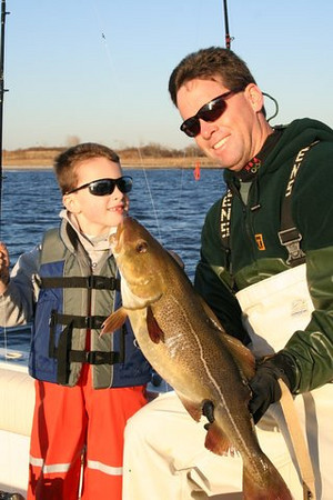 Feb 2, 2009<br /> <br /> Luke's first cod on a local south shore wreck! out of Sheep's Head Bay Brooklyn... Life is good. 15 cod on the day to 16 lbs. The little guy had 6 himself (now 6 yrs.old)<br /> <br /> Henry Feeney
