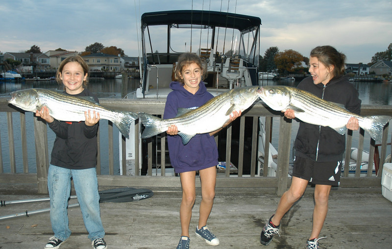 """10/24/2010<br /> <br /> Julia Wilkinson, Nicole Hooker and Samantha Hooker (left to right) also known as """"The Treble Hooks"""" with three nice bass taken on October 24th in the State Boat Channel just east of the Wantagh Parkway while aboard the """"Reel Hooker.""""  Dads involvement was limited to taking pictures.  Great job by some great fishergirls!!"""