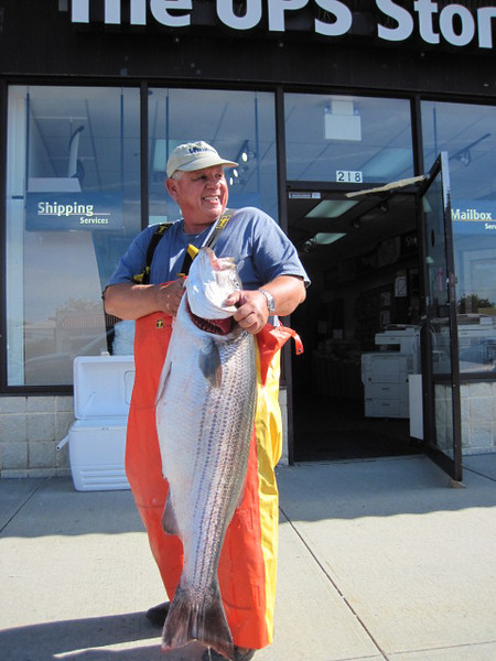 June,11 2010<br /> Friday I decided to fish near my Long Beach UPS Store. George Yurcak joined me and we trailered my Boston Whaler to Jones Beach inlet. Are efforts where rewarded with 6 fish to 45lbs and we left the fish biting for we both had to get to work.<br /> <br />   -RB UPS Store Babylon & Long Beach
