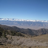 On top of the White Mountains looking over at the Sierras.