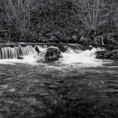 River Scenes 2018