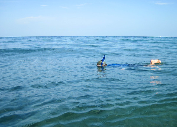 snorkeling-at-the-beach-1.jpg