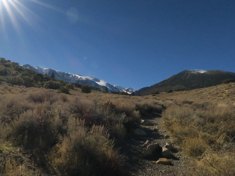 Start of hike to Parker Lake