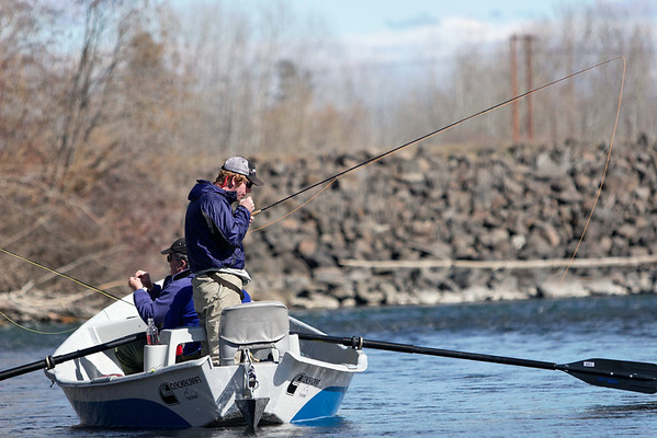 Snapshot gallery of a March 19th 2006 fly fishing float trip on the Yakima River near Ellensberg Washington. Images include fly fishing, trout, birds, and river landscapes. Images have been cropped and batch processed. All files are Copyright © 2006 J. Andrew Towell Please contact me at troutstreaming@gmail.com to negotiate for any and all usage rights.