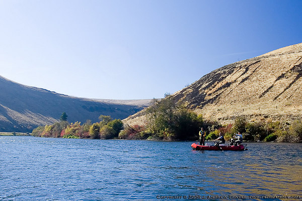 "Snapshot gallery of a Yakima River fly fishing float trip in the Canyon (Big Horn to Reds Drift) in late October. Some images of fall color in the canyon and of fly fishermen. Images have been cropped, batch processed and resized for display on the web. Copyright © 2006 J. Andrew Towell <a href=""http://www.troutstreaming.com"">http://www.troutstreaming.com</a> . Images may not be used for any purpose or altered in any form without the express prior written permission of the copyright holder, who can be reached at troutstreaming@gmail.com"