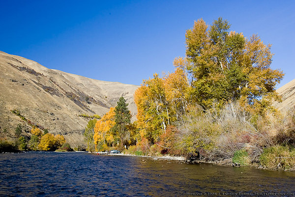 """Snapshot gallery of a Yakima River fly fishing float trip in the Canyon (Big Horn to Reds Drift) in late October. Some images of fall color in the canyon and of fly fishermen. Images have been cropped, batch processed and resized for display on the web. Copyright © 2006 J. Andrew Towell <a href=""""http://www.troutstreaming.com"""">http://www.troutstreaming.com</a> . Images may not be used for any purpose or altered in any form without the express prior written permission of the copyright holder, who can be reached at troutstreaming@gmail.com"""
