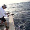 Ron Moy fights a tuna on the rail.
