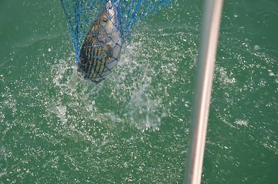 2012 FISHING TRIPS