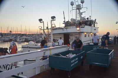 American Anglers Dock Pics 9-13-15