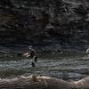Vermilion River scenes-35