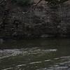 Vermilion River scenes-39