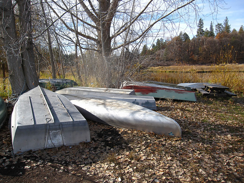 Lots of guys don't haul their small boats back and forth, they just leave them chained up to the trees.  I counted 19 boats there Friday morning, this is just a sampling.