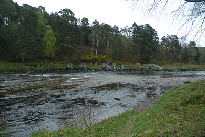 Comarty beat, River Dee