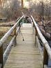 Bridge over the Metolius