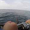 Sitka, Alaska 2017 - Version 2.0 - Calm Waters