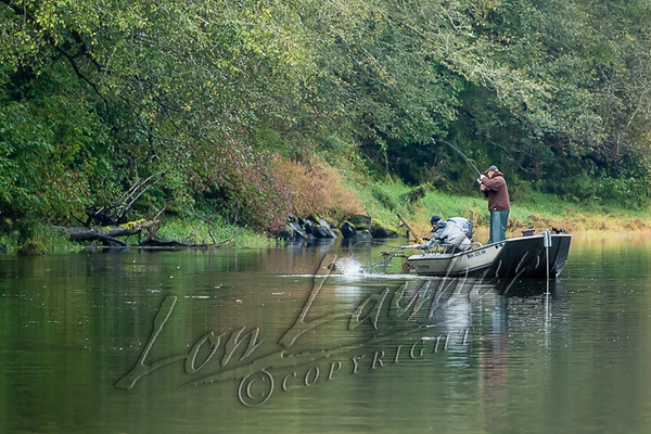 Fishing, salmon fishing from a boat