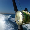 A Shimano Trinidad shining in the sun as we steam away from Cable Beach in Broome, Western Australia