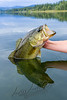 Fishing, bass fishing, early fall