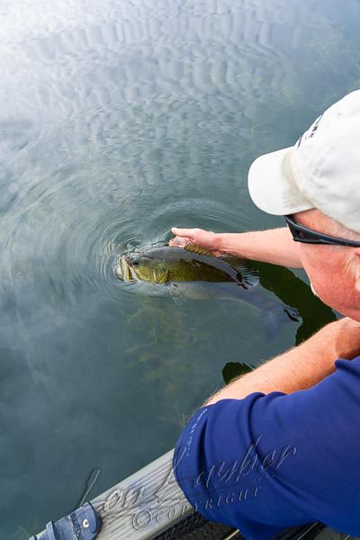 Fishing, bass fishing, early fall
