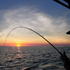 Dave from Ureel Adventure Tours fighting a fish at Sunset near Raft Point, Kimberley far North Western Australia.