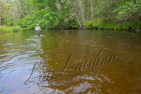 Fishing, Fly Fishing, Pere Marquette River, MI