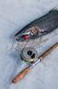 Fishing, fly fishing
