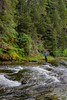 Fishing, fly fishing for trout