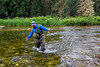 Fishing, fly fishing for trout, westslope cutthroat trout