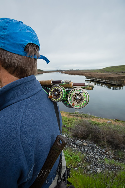 Fishing, fly fishing, rainbow trout