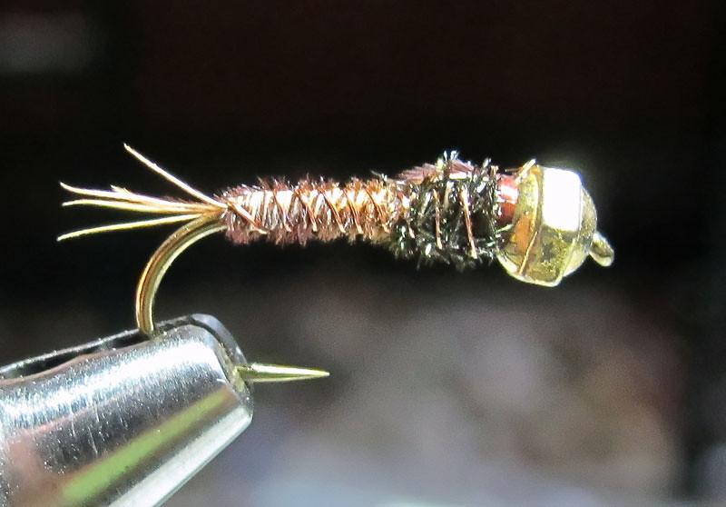 #10 Bead Head Pheasant Tail Nymph