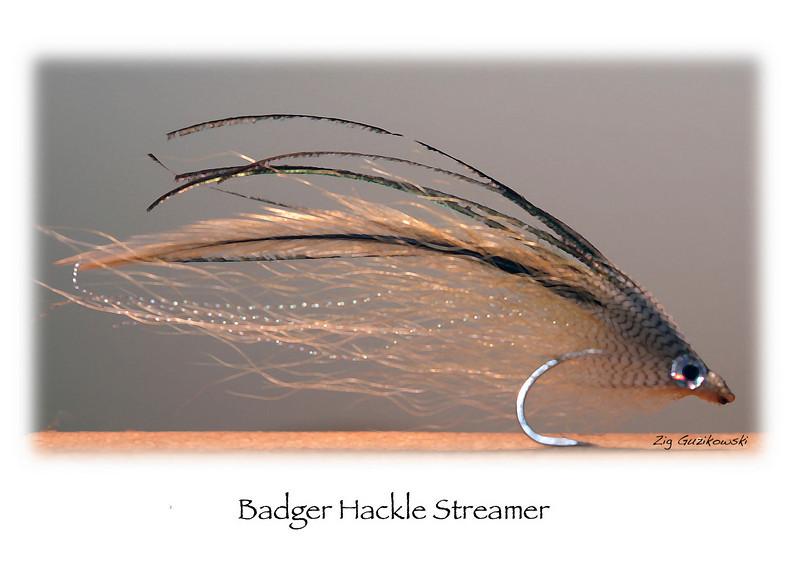 605 badger hackle streamer card proof