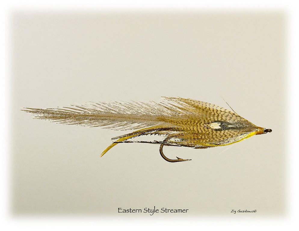 Eastern Streamer
