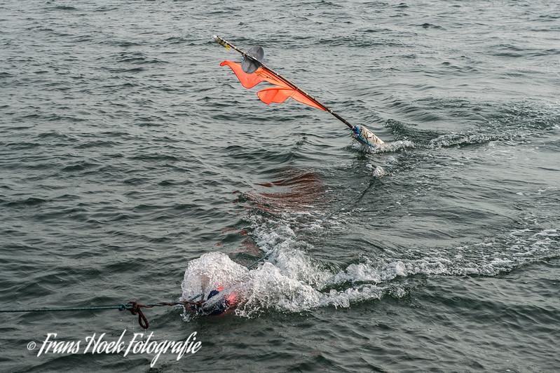 The buoy with the gill net attached is retrieved. De boei met daaraan het staand want net wordt opgehaald.