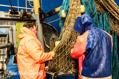 Checking for damage on the nets / Kijken of er schade aan het net is.